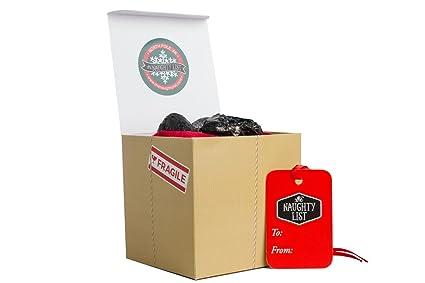 Amazon.com: Christmas Gift Lump of Coal Holiday Present for Your ...