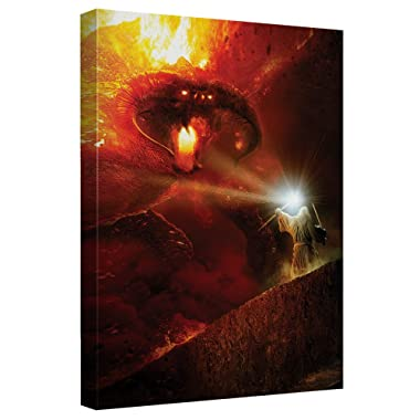 Trevco Lord of The Rings LOR/Balrog-Canvas Wall Art with Back Board