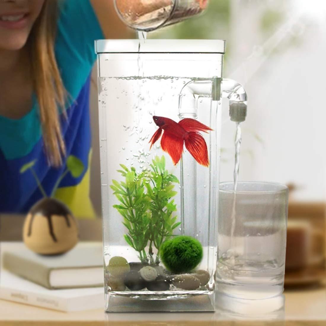 Lanbinxiang@ Plastica Quadrata Creativa Ecologica Desktop Mini Acquario Fish Bowl in oro, Acquario Pigro con ciottoli, Erba vegetale, LED Light e Super Cisterna Bellissimo