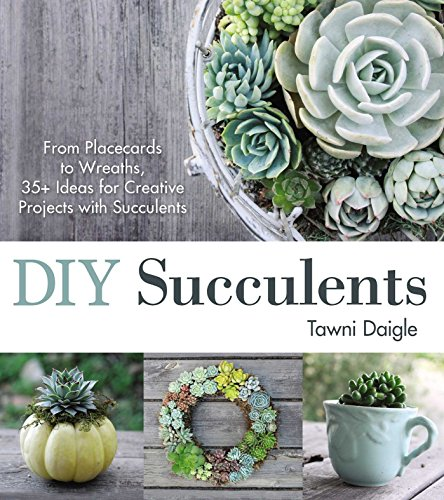 Wedding Diy Projects (DIY Succulents: From Placecards to Wreaths, 35+ Ideas for Creative Projects with)
