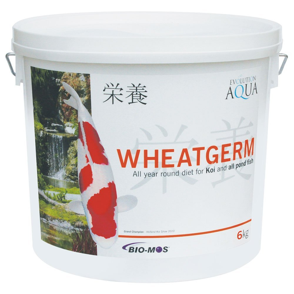Evolution Aqua Wheatgerm - 6 Kgs - Medium Pellet - 5-6Mm