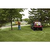 NorthStar Skid Sprayer - 55-Gallon Capacity, 160cc