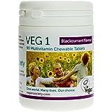 Vegan Society VEG 1 - Vegan Multivitamin (Vegan Society) schwarze Johannisbeere