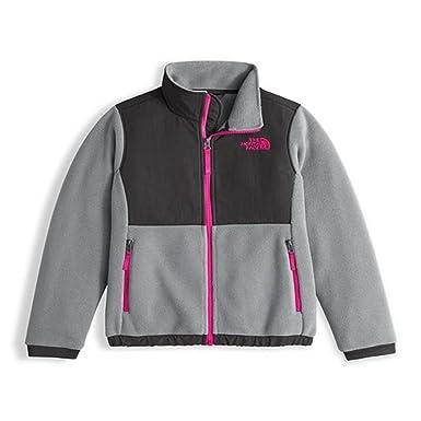 20aee573b Amazon.com: The North Face Kids Denali Jacket Little Kids/Big Kids ...