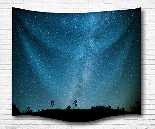 Starry Night Wall Tapestry, Running in Voluminousness Night Light Your Fire Deep Bird's Eye View Blue Scene Mandala Home Decretive Living Room Bed Throw in Vast Universe 60L X 50W Inches ()