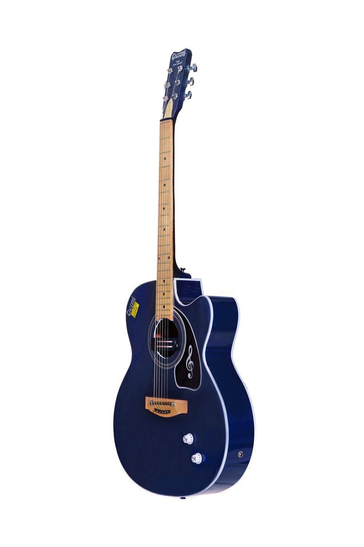 6. Givson Venus Super Special, 6-Strings, Semi-Electric Guitar