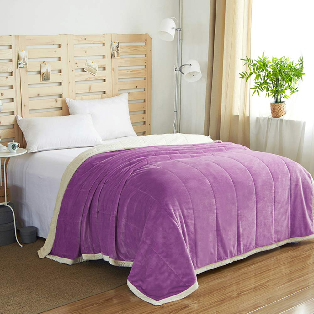 DULPLAY 両面 フランネル毛布, 冬 厚く ぬいぐるみ 超ソフトで暖かい 通気性 スロー ベッドの毛布 すべての暖かいシーズン ベッド オフィス ラップ- 200 * 230cm B07JC89W79
