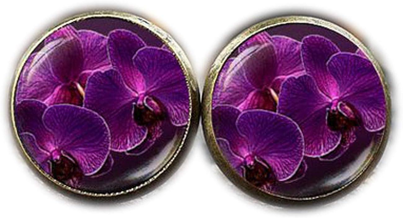 Pendientes de flor de orquídea, orquídeas arte regalo, naturaleza pendientes