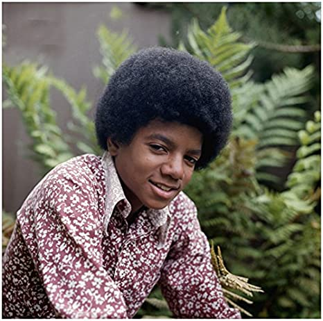 Michael Jackson 8 inch x 10 inch Photo Young Michael in Purple & White  Flowered Shirt Ferns in Background kn at Amazon's Entertainment  Collectibles Store