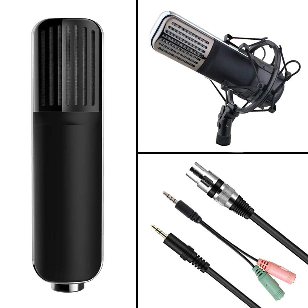 ZYG.GG Professional Studio Broadcasting & Recording Condenser Microphone Set Including: Condenser Mic, Mic Shock Mount, Anti-Wind Foam Cap, Microphone Audio Cable