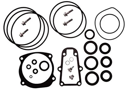 Amazon Com Gear Housing Seal Kit Omc Oem 396354 439141 5000411