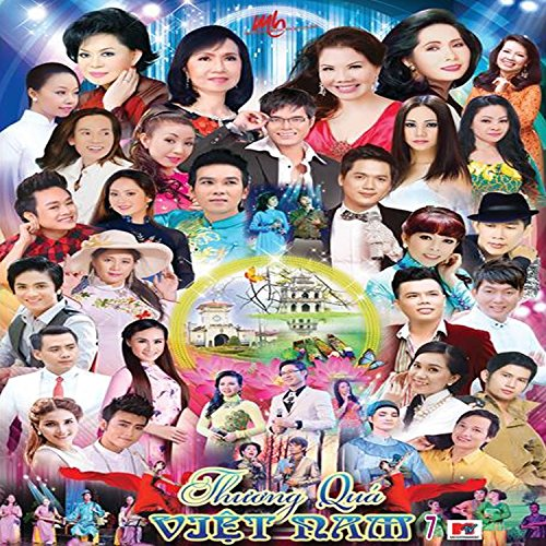 Amazon.com: Dinh Menh: An Thien Vy ft Ha My: MP3 Downloads