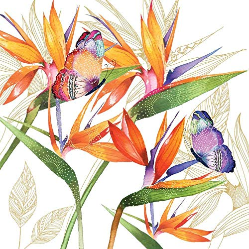 Paperproducts Design PPD 1252713 Parrot Flower Beverage/Cocktail Paper Napkins,5