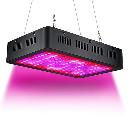 Amazon.com: Luz LED de crecimiento de 1000 W espectro ...