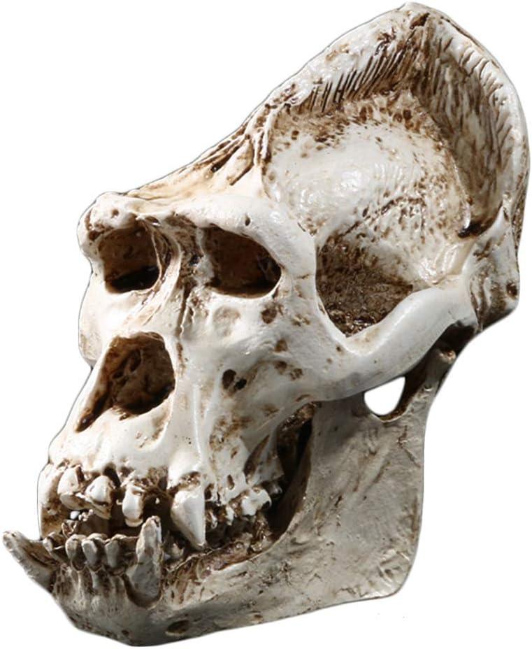 Gorilla Schädel Kopf Harz Replica Personality Medical Teaching Skeleton Modell Statue Halloween Hauptdekoration Amazon De Küche Haushalt