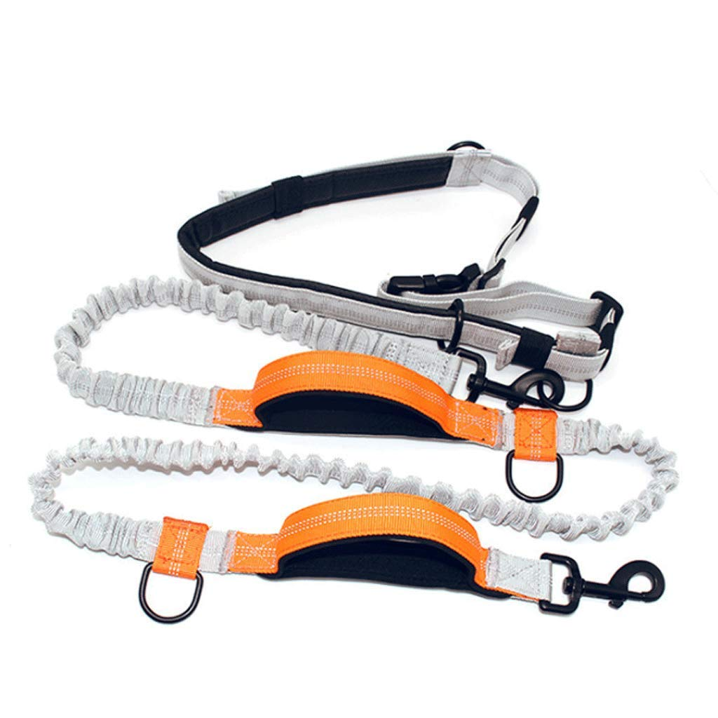 orange Dog Leash Double Stretch Dog Rope Multi-Function Running Rope Dog Suit (color   orange)