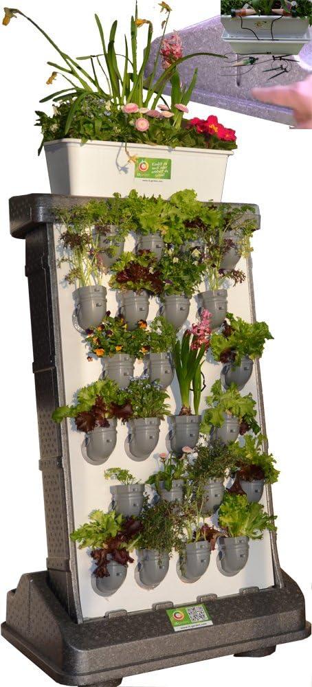 i3-Benjamin Pro-Kit Interior Incl. Auto irrigación jardín Vertical: Amazon.es: Jardín