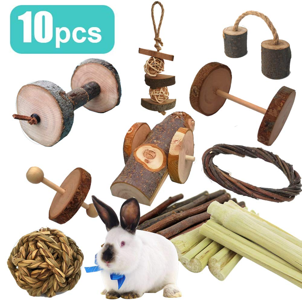 10 PCS Pets Guinea Pig Toys, Natural Apple and Birch Made , Keep Your Little Pet Closer To Nature, Fun Dumbbell Exercise Toy, Teeth Care Molar for Chinchilla Hamster Rabbits Bird Rat Gerbil 61LwMBc7KlL