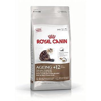 Royal canin Ageing + 12 pienso para gatos: Amazon.es: Productos para mascotas