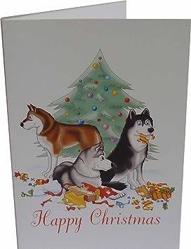 Husky Christmas Cards.Siberian Husky Christmas Cards 10 Cards