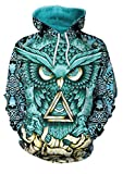 Ecohaso Men Women 3D Printed Long Sleeve Pullover Christmas Pullover Hoodies (M, Owl)