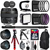 Canon EF 85mm f/1.8 USM Lens + 0.43X Wide Angle Lens + 2.2x Telephoto Lens + LED Kit + Stabilizing Handle + UV-CPL-FLD Filters + Macro Filter Kit + 72 Monopod + Tripod - International Version