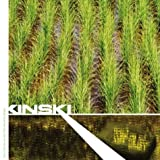 Don't Climb On And Take The Holy Water by Kinski (2004-05-04)