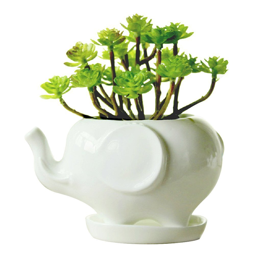 Youfui Cute Succulent Planter Animal Shaped Flower Pot Decor for Home Office Desk Elephant L