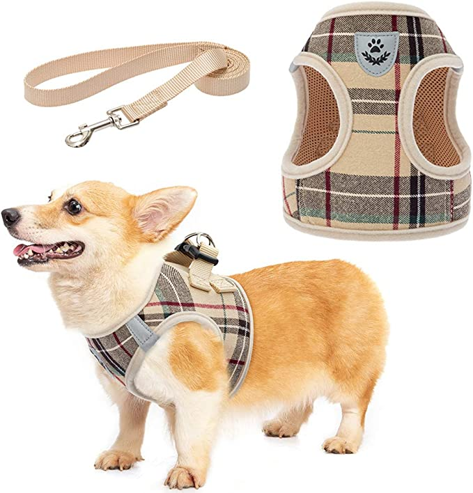 Amazon.com : Soft Mesh Plaid Puppy Harness - Small Dog Harness and Leash Set, Adjustable & Comfortable Padded Reflective Vest for Puppies and Small Breeds Dogs Walking : Pet Supplies