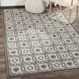 Safavieh Amherst Collection AMT431E Ivory and Grey Indoor/ Outdoor Area Rug (3′ x 5′) Review