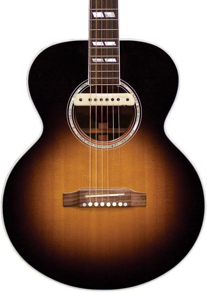 BEST L.R. Baggs M1 Active Acoustic Guitar Magnetic Soundhole Pickup