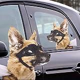 Thumbs Up UK Dog Ride, Car Window Cling