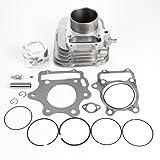 Niche Industries 1927 Honda Sportrax TRX300EX Cylinder Piston Gasket Spark Plug Kit 1993-2008