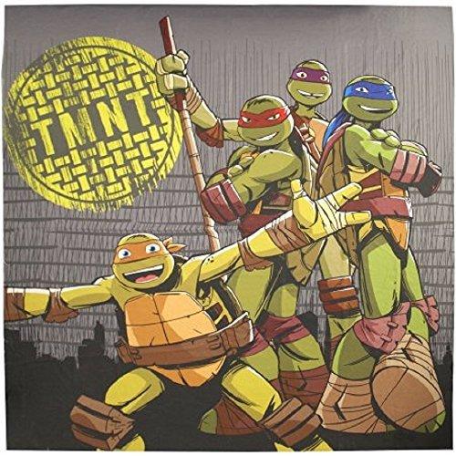 ninja turtle bathroom - 7