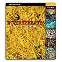 Invertebrates: A Quick Reference Guide