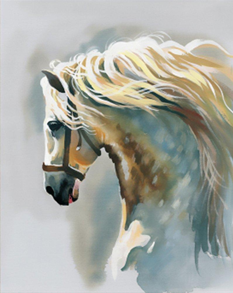Pintura por Numeros Con Marco (ITM26794) caballo