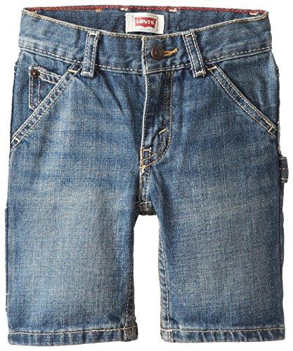 Levi's Little Boys' Holster Short Dusty Vintage, Dusty Vintage, (Levis Boys Shorts)