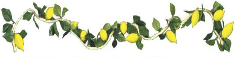 Esrog Rope Garland Sukkah Decoration Ludmir Judaica SG/_B00EV408JE/_US
