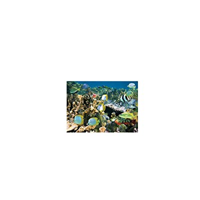 Limsea Puzzles for Adults 1000 Piece Large Puzzle, 3D Ocean World Paintings Landscape Jigsaw Puzzle: Toys & Games