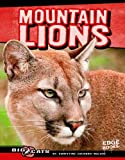 Mountain Lions (Big Cats)
