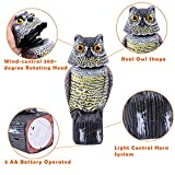 Ohuhu Natural Enemy Rotating Head Horned Owl