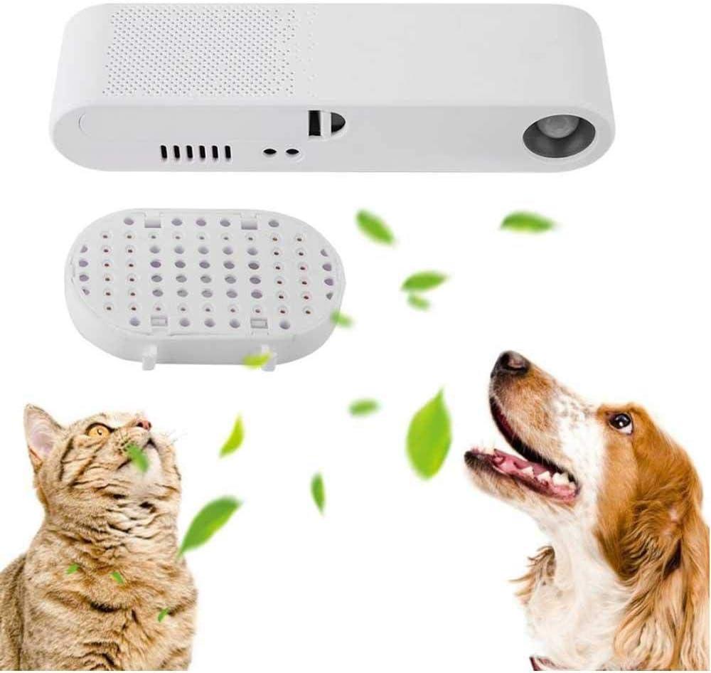 Ambientador para Mascotas, Limpiador de Aire para Mascotas ...