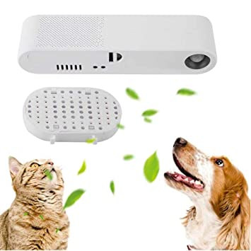 Womdee Pet Deodorizer, Pet Air Freshener Purifiers & Cat Dog Odor Eliminator Remover, Help Kill Germs, Freshen Air, Reduce Odors from Pets, or Toile: Amazon.in: Home & Kitchen