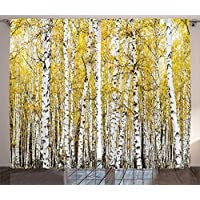 Ambesonne Farm House Decor Curtains by, Autumn Birch...