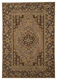 Signature Design by Ashley R400021 Sangerville Accent Area Rug, 8x10, Tan