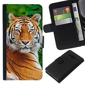 Planetar® Modelo colorido cuero carpeta tirón caso cubierta piel Holster Funda protección Samsung Galaxy Core Prime ( Tiger Smart Big Cat Nature Animal Africa )