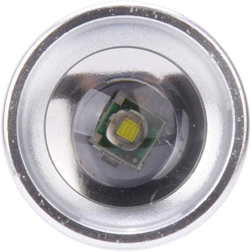 Tente Alomejor Lampe Torche Solaire Portable USB Charge avec Panneau Solaire 2 W 5 V pour /éclairage ext/érieur Camping randonn/ée Travail en ext/érieur p/êche