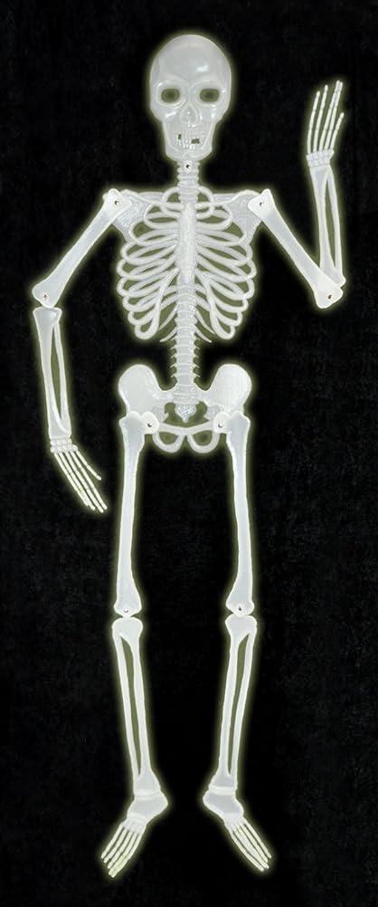Halloween Skeleton 5ft Plastic Glow In The Dark: Amazon.co.uk ...