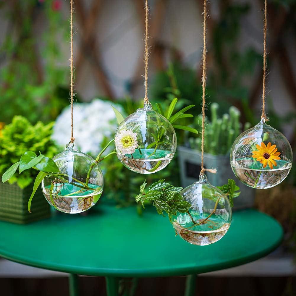 birnenform Glas H/ängen Pflanzgef/ä/ße Wasserpflanzenbeh/älter Terrarium Kerzenhalter Indoor Outdoor 4 St/ücke mit Saiten Seil f/ür Hausgarten Balkon