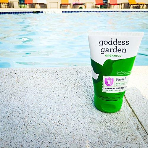 Goddess Garden Organics Facial Spf 30 Natural Sunscreen Lotion 3 4 Ounce Buy Online In Uae